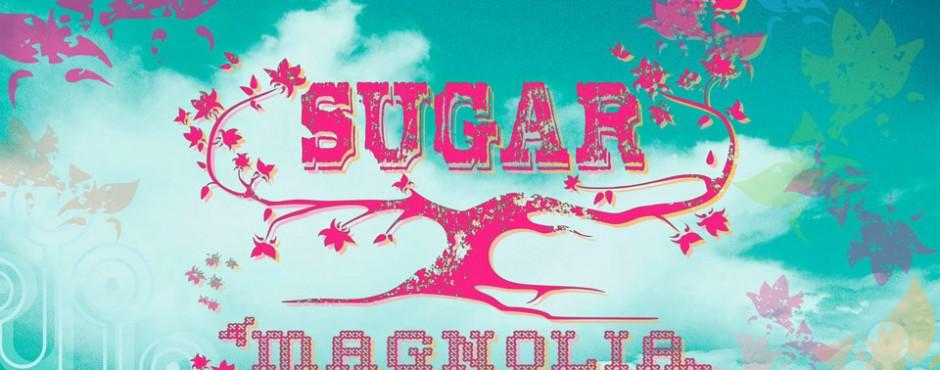 "<h1>Portland rocks K100's ""Sugar Magnolia Folk Festival"" starring Sarah McLachlan in ""Life Unexpected.""</h1><p>Brand Identity. <a href="" http://kristinalynedesign.com/?portfolio=sugar-magnolia "">Read more »</a></p>"